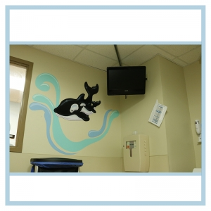 3d-mural-orca-wall-design-healthcare-art-decals