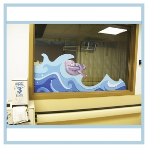 window-decals-manatees-hospital-art