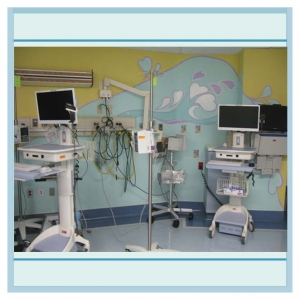 icu-artwork-wall-murals-in-hospitals-healthcare-design - Copy