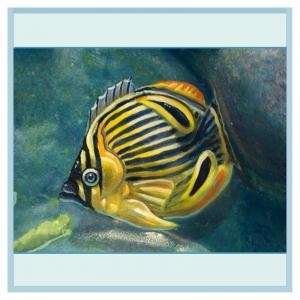 close-up-tropical-fish-hospital-murals