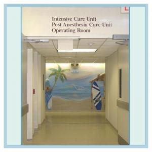 cute-tropical-fish-childrens-areas-hospital-art-murals-design
