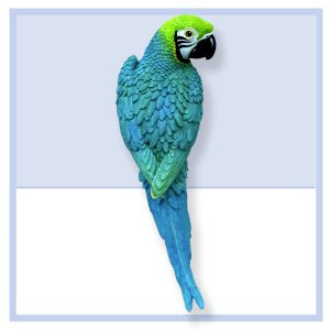 db14bluegreenmacaw