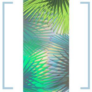 palm cover light panel